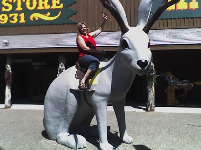 riding-the-rabbit