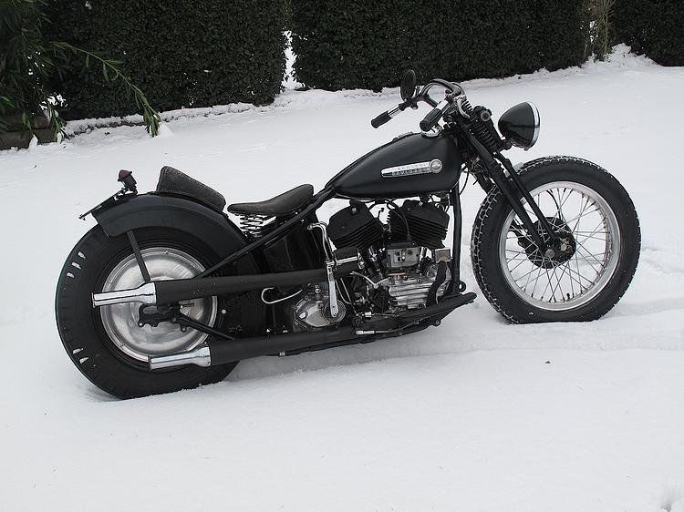 Flathead in the snow